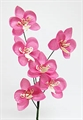Orchidee mini 35mm pink